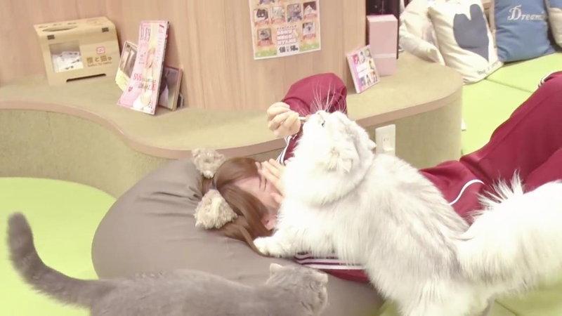 えなこが顔を猫に踏まれる7